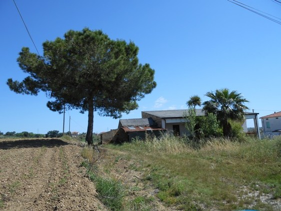 two bed habitable farm house with 8000sqm of land, 5km to beach 1