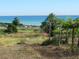 500000 sqm of flat land 2km to the beach, sea and mountain view