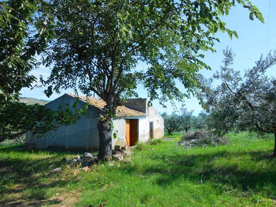 40sqm barn and 10,000sqm land for a 100sqm villa21