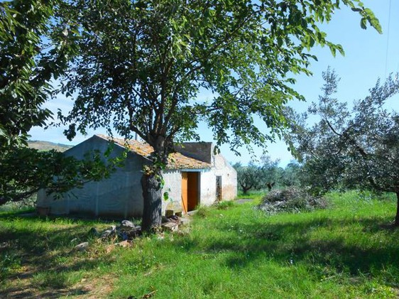 40sqm barn and 10,000sqm land for a 100sqm villa2