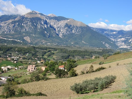 Farm house with open, fantastic mountain views, barn and 8000sqm of olive grove 1
