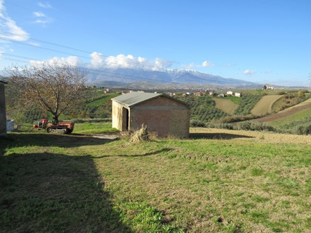 25,000 sqm of hill top land with barn and 150 olive trees and mountain views 2km to town