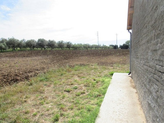 15,000 sqm of vineyard with sea view and 30sqm garage 5km to the beach with rights to build 450sqm of Villa